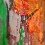 kolo 180415 0025 by AnnStark (digital)